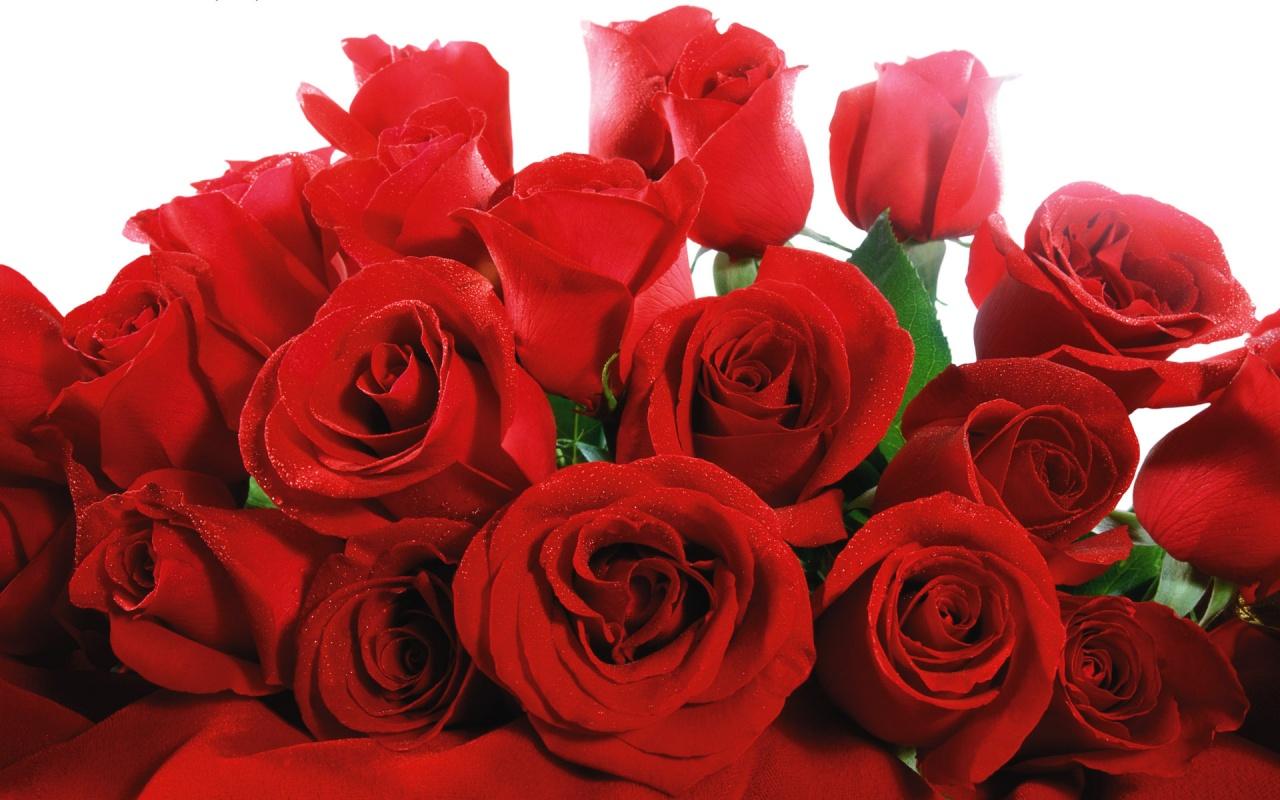 Aşk Duvar Kağıtları 9 Aşk Resimleri Aşk Sevgi Sitesi Aşk